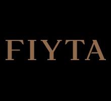 飞亚达 FIYTA